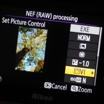 raw-processing-in-camera